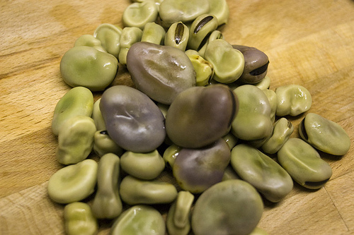 Are Beans Paleo?