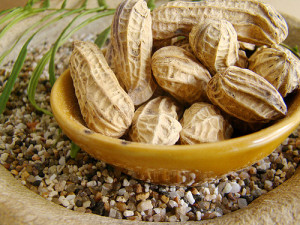 are peanuts paleo
