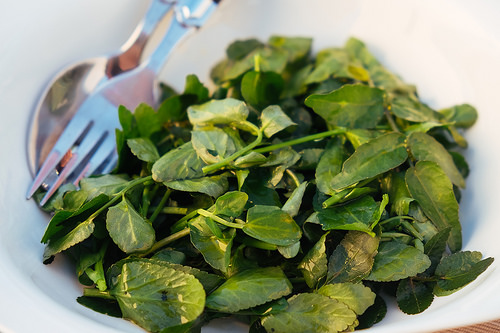 Is Watercress Paleo?