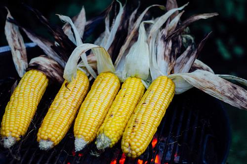 Is Corn Paleo?