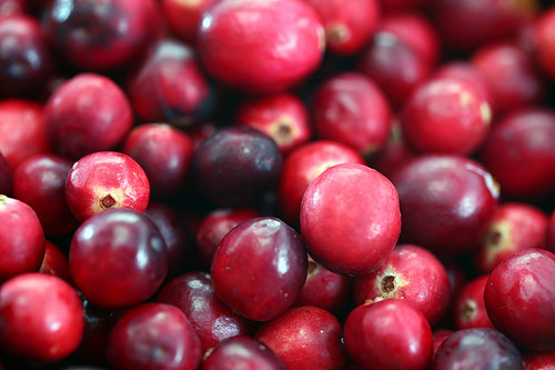 Are Cranberries Paleo?