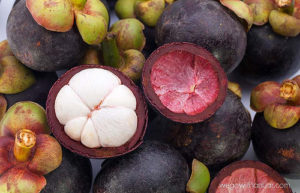 is mangosteen paleo