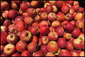 are apples paleo