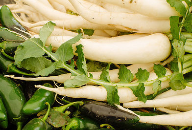 is radish paleo