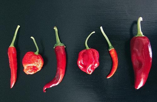 is chili pepper paleo
