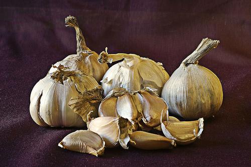 is garlic paleo